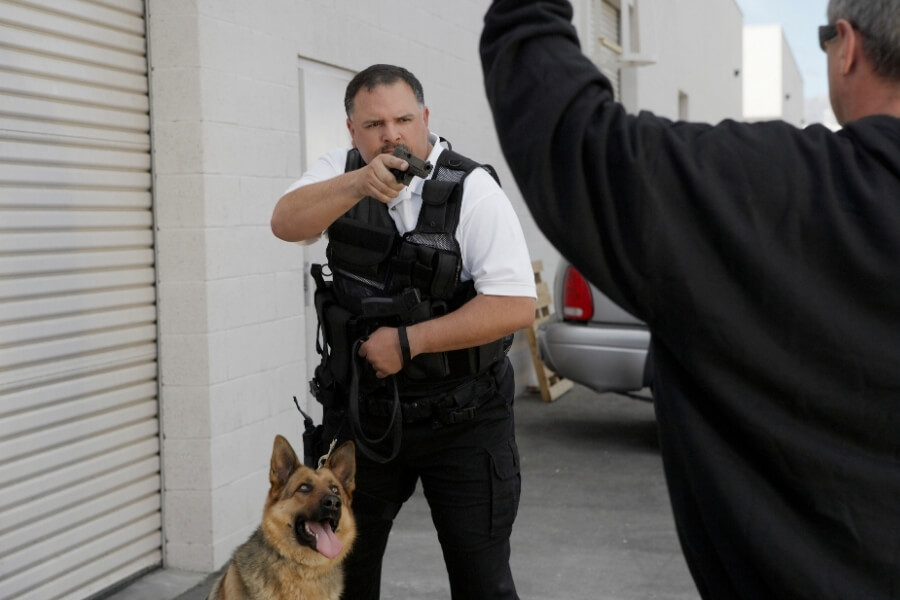 Private Armed Security in DC